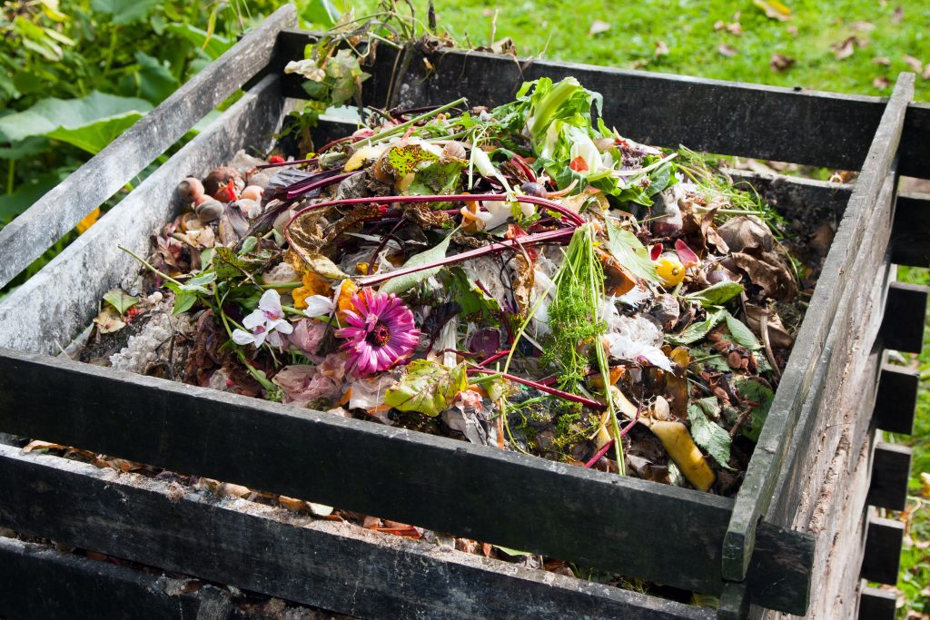 Cardia launches home compostable resin